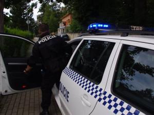 Praha vypíše zakázku na samonabíjecí pistole pro strážníky