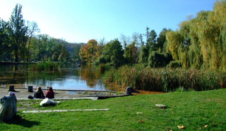 V pražské Stromovce byly nalezeny lidské kosti. Případ řeší policie