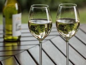 Největší vinařský projekt Král vín České republiky ovládlo Vinařství Volařík