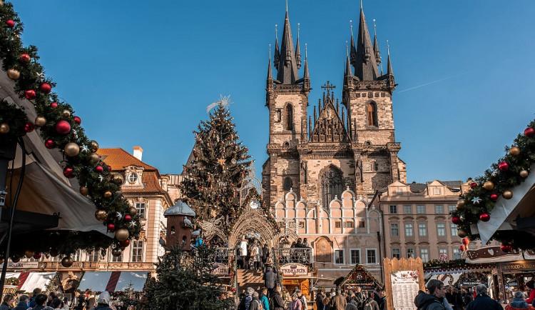 Vánoční strom na Staroměstském náměstí letos bude. Velké vánoční trhy a doprovodný program se však neuskuteční