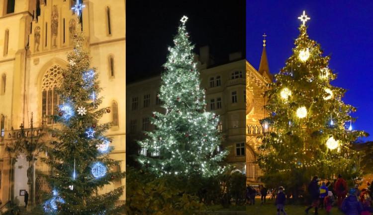 ANKETA: Která městská část má letos ten nejkrásnější vánoční strom?