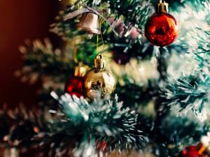 Vánoční zvyky a tradice v Česku. Které se dodržují dodnes a které již zanikly?