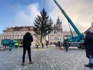 FOTO: Ze Staroměstského náměstí již zmizel vánoční strom. Z kmene bude nábytek pro domov seniorů