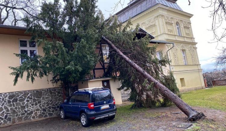 Do Česka míří silnývítr. Meteorologové varují před pády stromů a poškozením budov