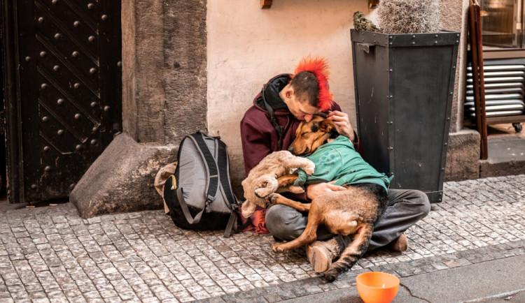 Mrazivé noci jsou pro bezdomovce problém. Armáda spásy má stále stovky volných míst