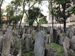 Den památky obětí holokaustu si připomenou v Senátu, v Terezíně i v Jeruzalémě. Setkání budou přenášena on-line