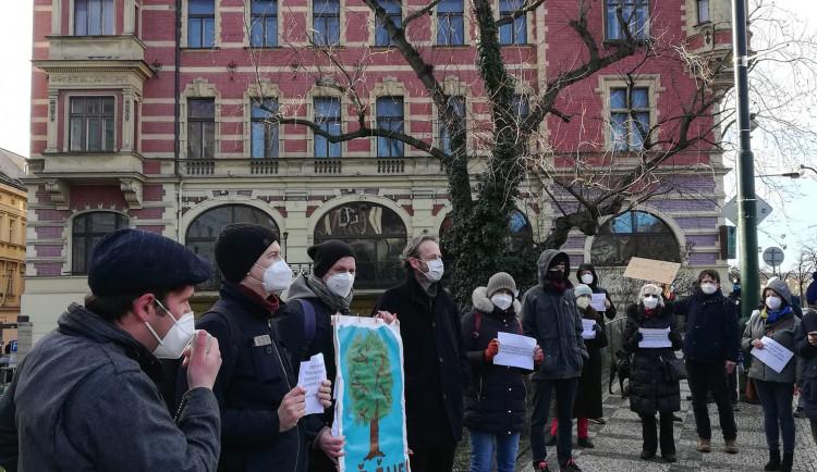 Lidé v Praze 1 demonstrovali proti kácení javoru. To je nyní pozastaveno