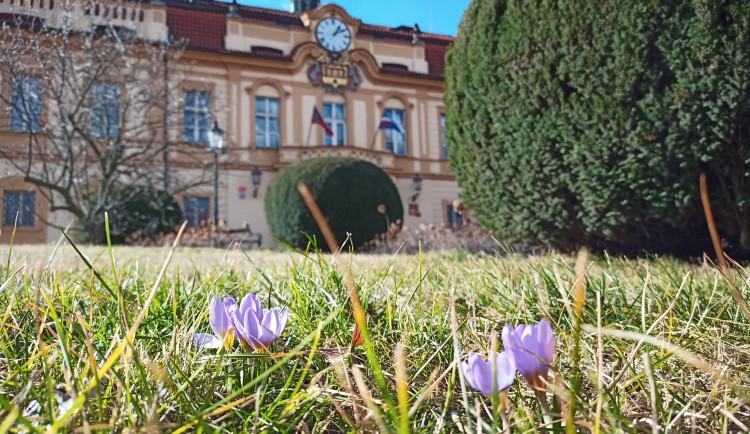 Rozpočet Prahy 8 bude letos 830 milionů. Na investice vydá radnice 150 milionů