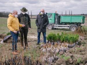 V Praze vzniká nový les. Vysazeno bude přes 50 tisíc nových stromů