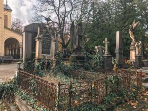 Pražské hřbitovy dostanou nové provozní řády. Zohlední jejich specifický provoz