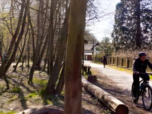 Malý hrádek vKrčském lese. Výlet pro rodiny sdětmi i pejskaře
