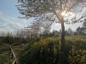 Kam o víkendu? Prozkoumejte neznámý lesopark vŘepích, který nabízí přírodu mezi sídlišti