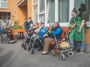 Z pražského vánočního stromu jsou lavičky a mobilní záhony pro domov seniorů. Vyrobili je studenti
