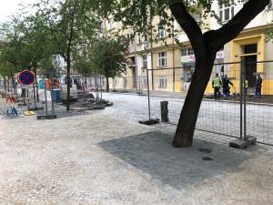 V Praze se rozhořel spor o výsadbu nových stromů. Budou v betonových kobkách a zasypány mlatem?