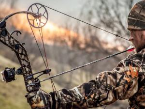 Obránci zvířat upozorňují na problémy spojené s lovením zvěře lukem. O novele zákona se rozhodne zítra