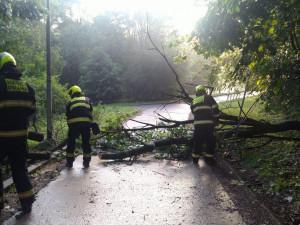 Noční bouřka v Praze zaměstnala hasiče
