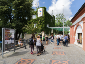V pražské zoo se budou moci do registru dárců kostní dřeně hlásit noví zájemci