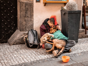 Zbavte nás bezdomovců, žádají městské části. Nemůžeme je vystěhovat do polí, reaguje magistrát