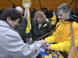 Žluté kytičky po pětadvacáté. Sbírka na boj s rakovinou letos potrvá déle