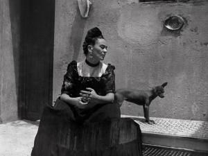 Dům U Kamenného zvonu hostí výstavu fotografií Fridy Kahlo
