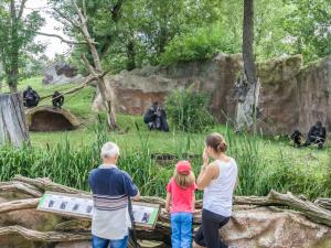 Pražskou zoo navštívilo tento rok přes 840 tisíc návštěvníků, podobně jako za celý rok 2020